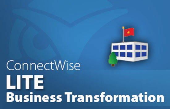 Business Transformation Audit - Lite