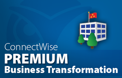 Business Transformation Audit - Premium