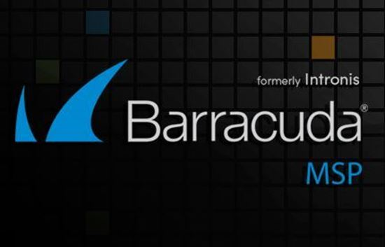 Picture of Barracuda Intronis Backup - MSP